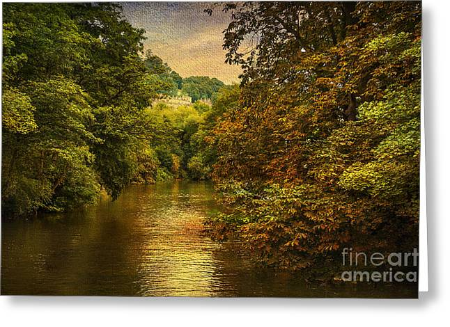 Nature Scene Digital Greeting Cards - River Path Greeting Card by Svetlana Sewell