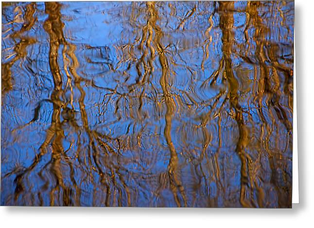 River Reflections Greeting Cards - River Reflection Greeting Card by Garry Gay