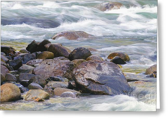 Stones In Water Greeting Cards - River Rocks Greeting Card by Sharon  Talson