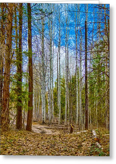 Witkowski Greeting Cards - River Run Trail at Arrowleaf Greeting Card by Omaste Witkowski