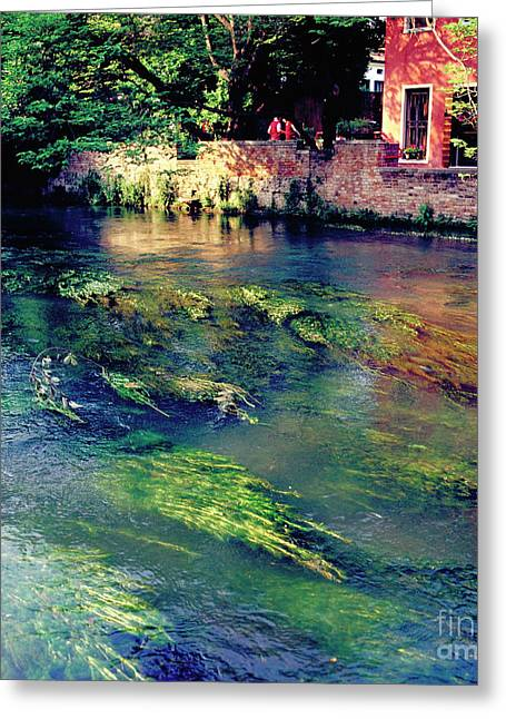 Water Flowing Greeting Cards - River Sile in Treviso Italy Greeting Card by Heiko Koehrer-Wagner