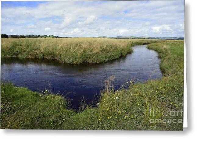 Caron Greeting Cards - River Teifi At Cors Caron Bog Greeting Card by Sinclair Stammers