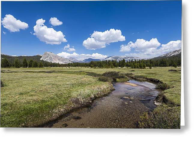 Paradise Meadow Greeting Cards - River through the Meadow Greeting Card by Joseph S Giacalone