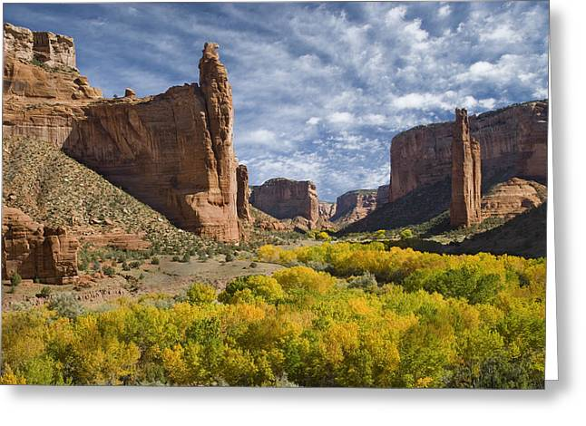 Photos Of Autumn Greeting Cards - River Valley And Spider Rock Canyon De Greeting Card by Tom Vezo