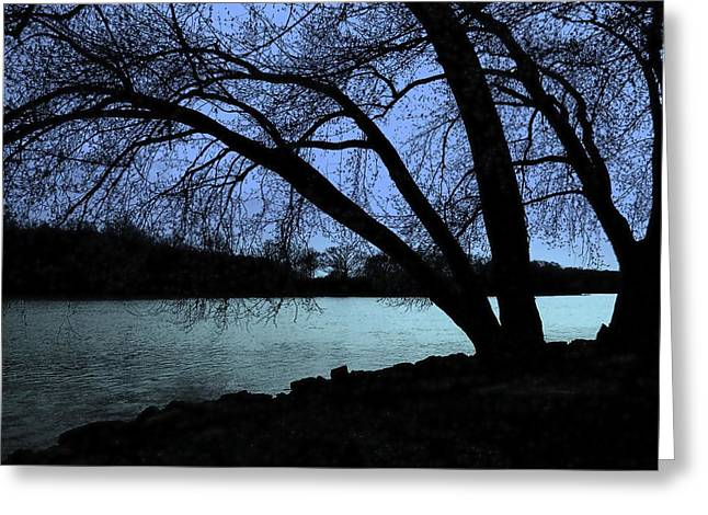 Ogling Greeting Cards - River View Greeting Card by Claude Oesterreicher