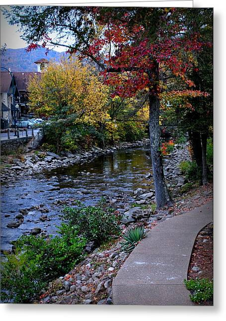 River View Greeting Cards - River View Greeting Card by Sara Whaley