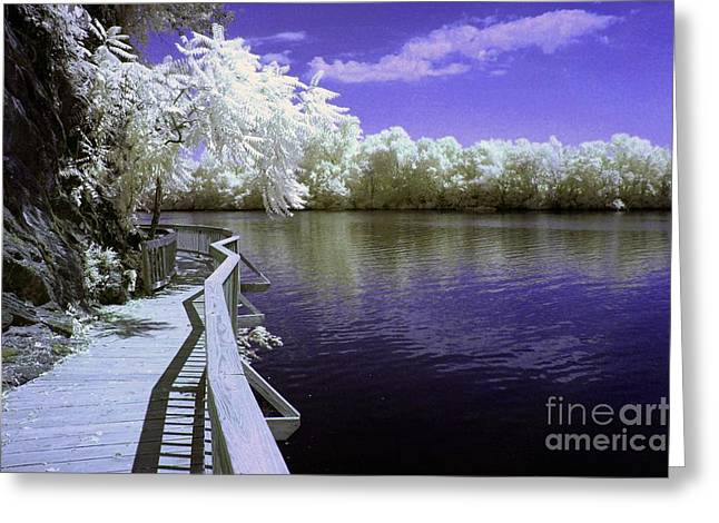 Nature Center Greeting Cards - River Walk Greeting Card by Paul W Faust -  Impressions of Light