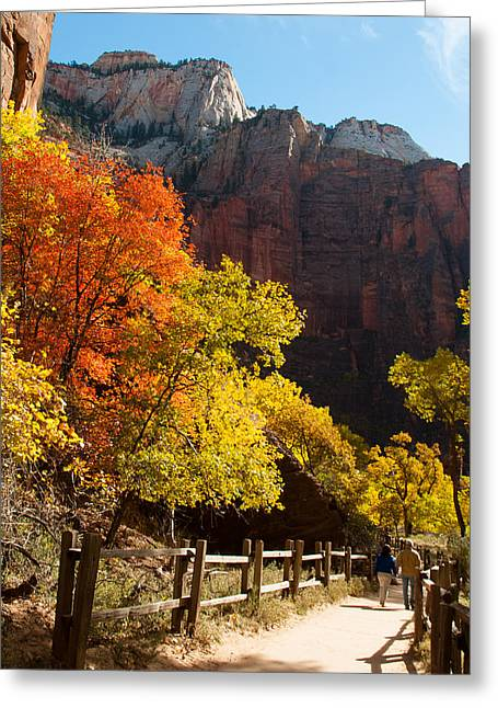 Geobob Greeting Cards - River Walk Trail Temple of Sinavava in Fall Zion National Park Utah Greeting Card by Robert Ford
