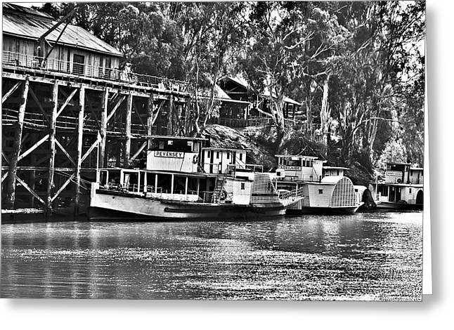 White Steamer Photos Greeting Cards - Riverboat Row Greeting Card by Paul Donohoe