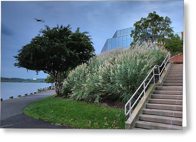 Jogging Greeting Cards - Riverfront Park II Greeting Card by Steven Ainsworth