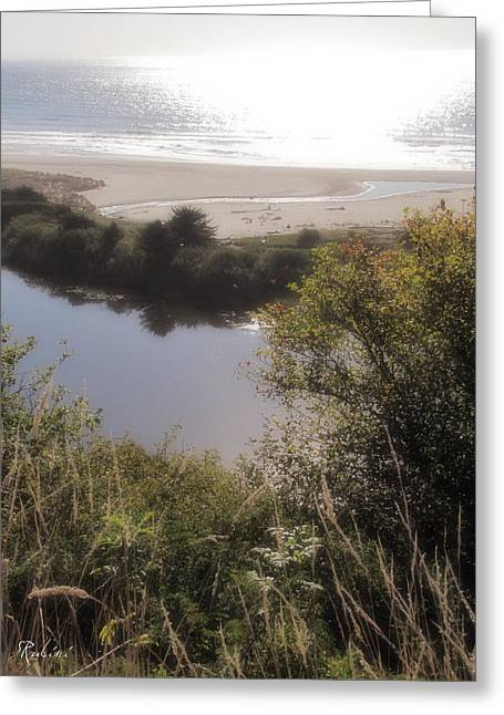 Agate Beach Greeting Cards - Rivers End Greeting Card by Sandy Rubini