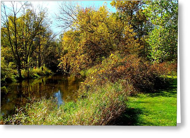 Indiana Autumn Greeting Cards - Riverside Autumn Greeting Card by Rory Cubel