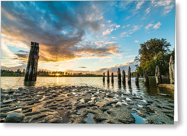 Words Background Greeting Cards - Riverside Muck Greeting Card by James Wheeler