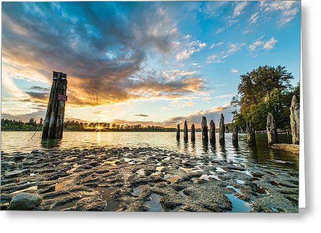 Beautiful Creek Greeting Cards - Riverside Muck Greeting Card by James Wheeler