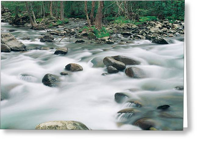Tennessee River Greeting Cards - Riverstream, Tennessee Greeting Card by Panoramic Images