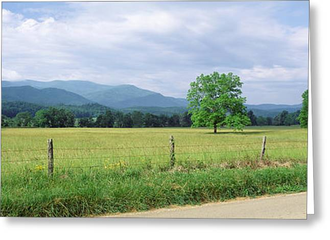 Tennessee Landmark Greeting Cards - Road Along A Grass Field, Cades Cove Greeting Card by Panoramic Images