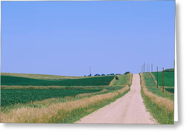 Telephone Poles Greeting Cards - Road Along Fields, Minnesota, Usa Greeting Card by Panoramic Images
