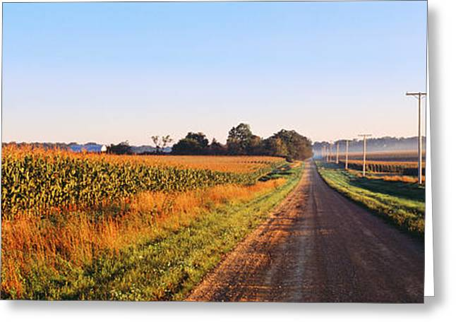 Cultivation Greeting Cards - Road Along Rural Cornfield, Illinois Greeting Card by Panoramic Images