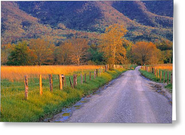 Tn Greeting Cards - Road At Sundown, Cades Cove, Great Greeting Card by Panoramic Images