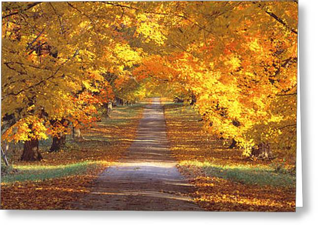 Wooden Fence Greeting Cards - Road, Baltimore County, Maryland, Usa Greeting Card by Panoramic Images