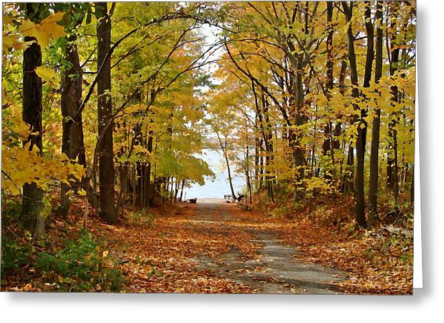 Indiana Autumn Greeting Cards - Road Ends at Water Greeting Card by BackHome Images