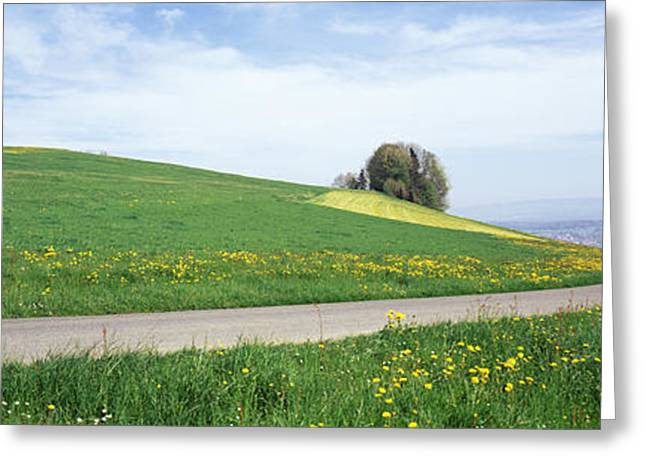 Pear Tree Greeting Cards - Road Fields Aargau Switzerland Greeting Card by Panoramic Images