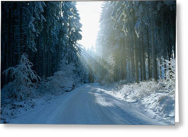Snow Covered Ground Greeting Cards - Road, Hochwald, Germany Greeting Card by Panoramic Images