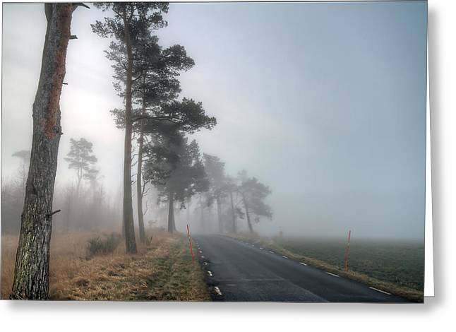 Paradise Road Greeting Cards - Road In Mist Greeting Card by EXparte SE