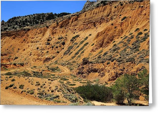 Take The High Road Greeting Cards - Road Less Traveled Greeting Card by Scott Hill
