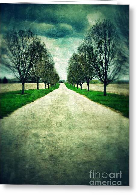 Country Dirt Roads Greeting Cards - Road Lined by Trees Greeting Card by Jill Battaglia