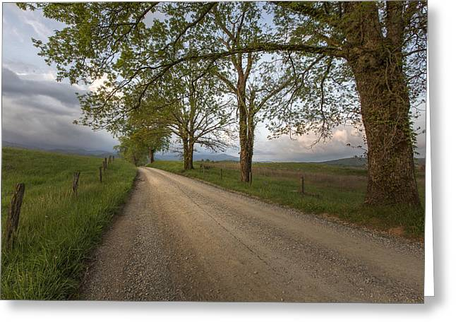 Fine Dining Canvases Greeting Cards - Road not Traveled II Greeting Card by Jon Glaser