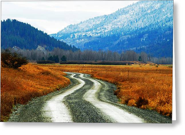 Annie Pflueger Greeting Cards - Road of Dreams Greeting Card by Annie Pflueger
