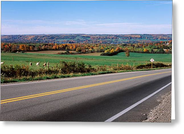 Finger Lakes Greeting Cards - Road Passing Through A Field, Finger Greeting Card by Panoramic Images