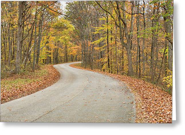 Road Passing Through A Forest, Brown Greeting Card by Panoramic Images