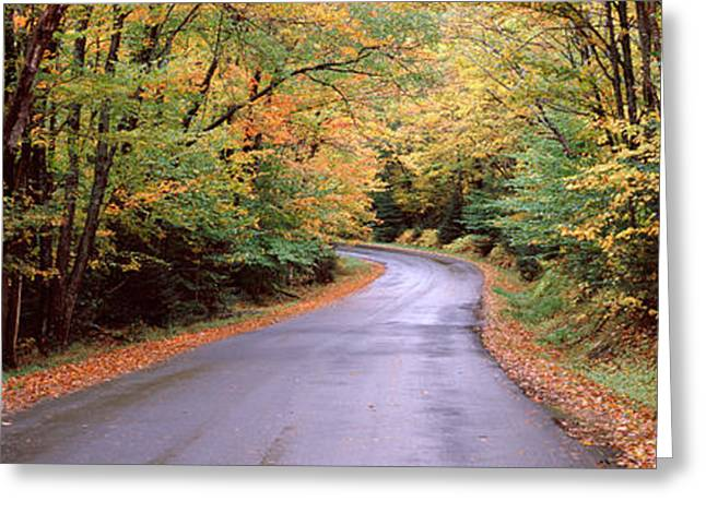 Bridge Road Greeting Cards - Road Passing Through A Forest, Green Greeting Card by Panoramic Images