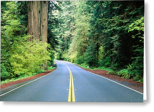 Double Yellow Line Greeting Cards - Road Passing Through A Forest, Prairie Greeting Card by Panoramic Images