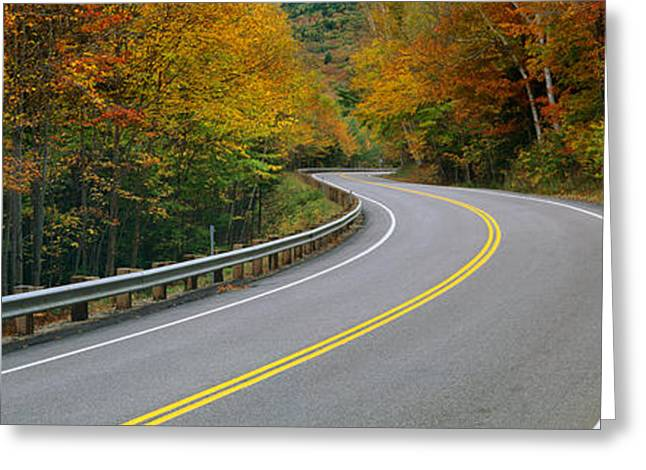 Double Yellow Line Greeting Cards - Road Passing Through A Forest, Winding Greeting Card by Panoramic Images