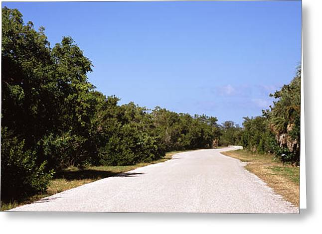 Wildlife Refuge. Greeting Cards - Road Passing Through Ding Darling Greeting Card by Panoramic Images