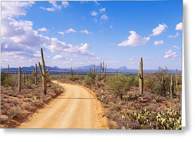 Winding Road Greeting Cards - Road, Saguaro National Park, Arizona Greeting Card by Panoramic Images