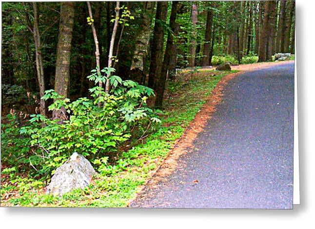 Take The High Road Greeting Cards - Road Split Greeting Card by Sandy Scharmer