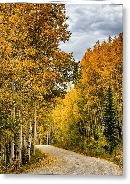 Turning Of The Leaves Greeting Cards - Road Through the Gold Greeting Card by Juli Ellen