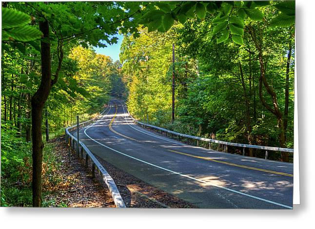 Rochester Artist Greeting Cards - Road through Trees Greeting Card by Tim Buisman