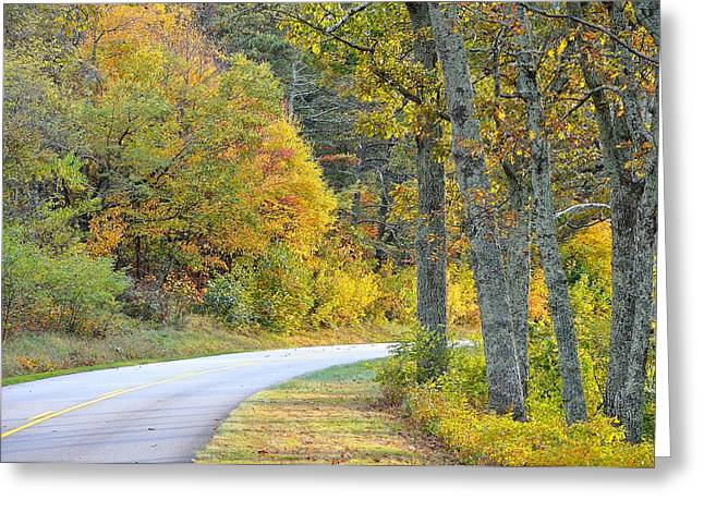 Yellow Line Greeting Cards - Road to Autumn Greeting Card by Todd Hostetter