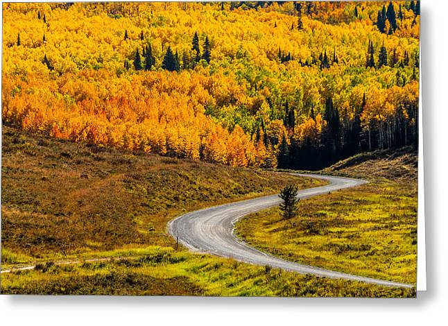 Mountain Road Greeting Cards - Road to Fall Color Greeting Card by Teri Virbickis