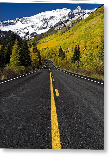The Nature Center Greeting Cards - Road to Fall Colors Greeting Card by Misty Sprouse