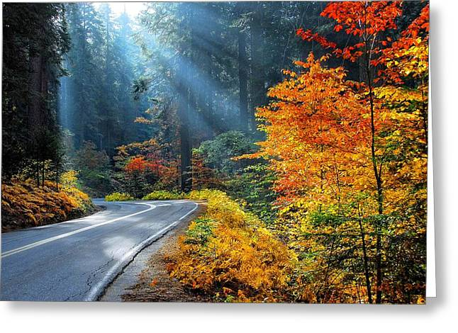 Kings Canyon Greeting Cards - Road to Glory  Greeting Card by Lynn Bauer