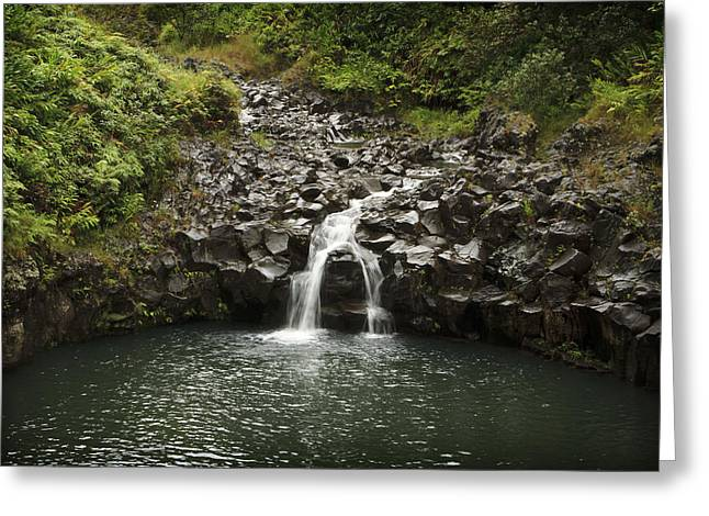 Paradise Road Greeting Cards - Road to Hana 5 Greeting Card by Jessica Velasco