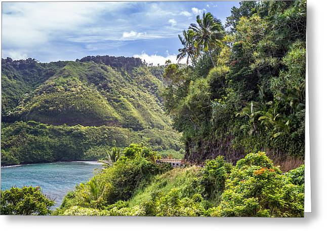 Paradise Road Greeting Cards - Road to Hana Greeting Card by Pierre Leclerc Photography