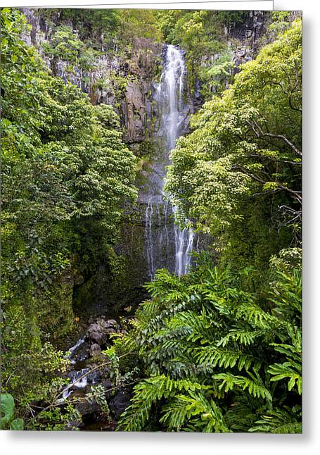 Waimea Falls Greeting Cards - Road To Hana Waterfall - Waimea Valley Maui Hawaii Greeting Card by Brian Harig