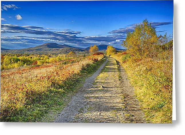 Rural Maine Roads Digital Art Greeting Cards - Road to Joy Greeting Card by Gregory W Leary